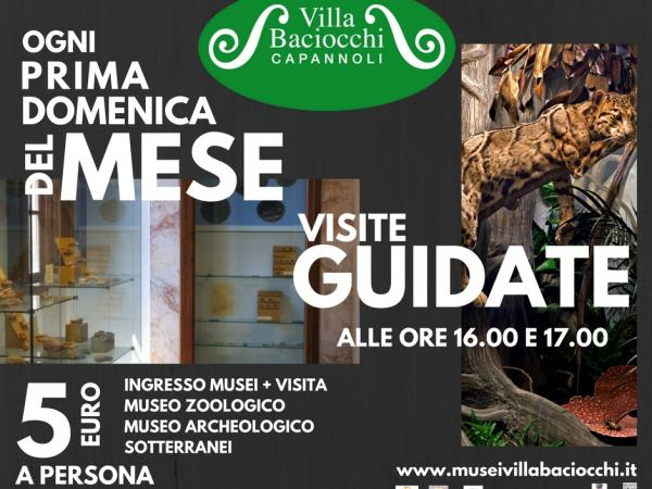DOMENICHE GUIDATE IN MUSEO